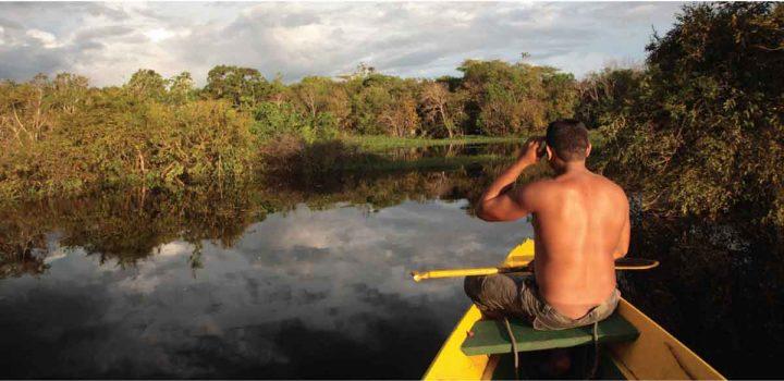 Fundo JBS da Amazônia investirá R$ 50 milhões em seis projetos