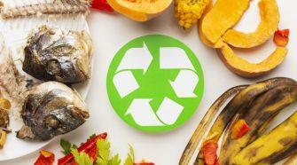 Países do G-20 debatem desperdício de alimentos