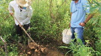 Governo do Estado disponibilizará análise de solo para agricultores de perímetro irrigado em Lagarto
