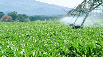 O futuro da agroindústria é tema de debate na quarta-feira
