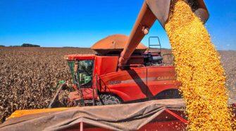 Último levantamento da safra 2020/21 confirma redução na produção de grãos